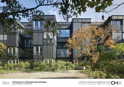 cha-161203-housing_in_sempacherstrasse-miller_and_maranta